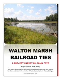 walton_marsh_Cover
